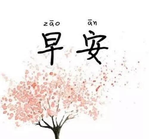selamat pagi dalam bahasa mandarin zao shang hao gambar pohon