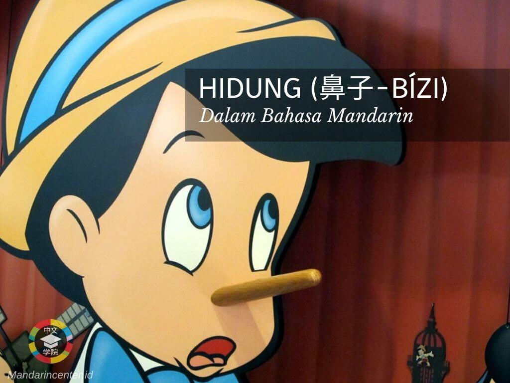 Hidung Dalam Bahasa Mandarin - Anggota Tubuh Manusia Dalam Bahasa Mandarin