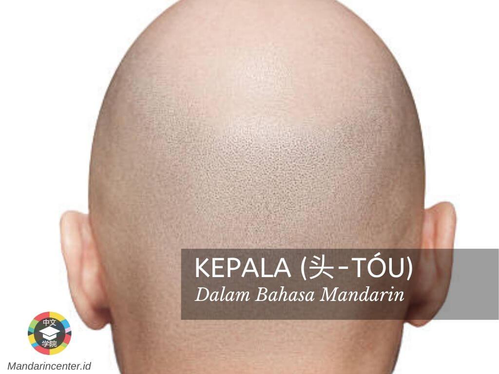 Kepala Dalam Bahasa Mandarin - Anggota Tubuh Dalam Bahasa Mandarin