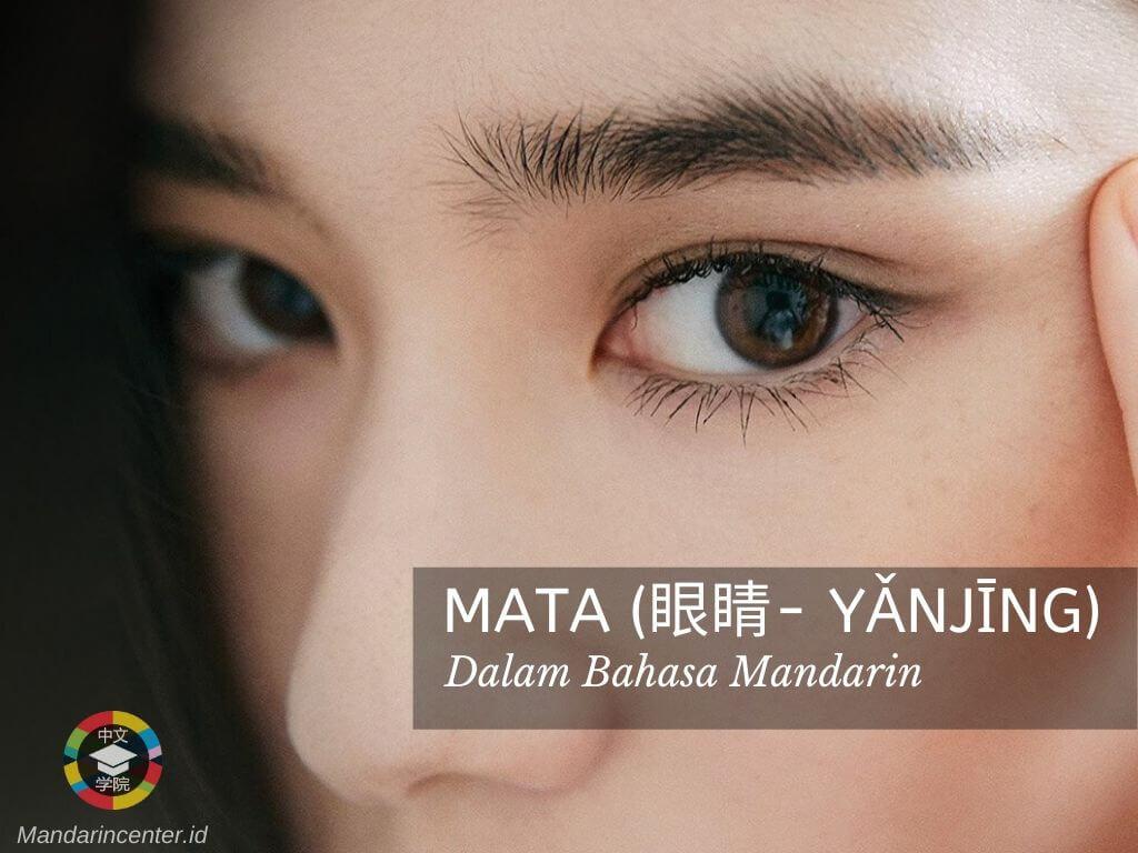Mata Dalam Bahasa Mandarin - Nama Anggota Tubuh Dalam Mandarin
