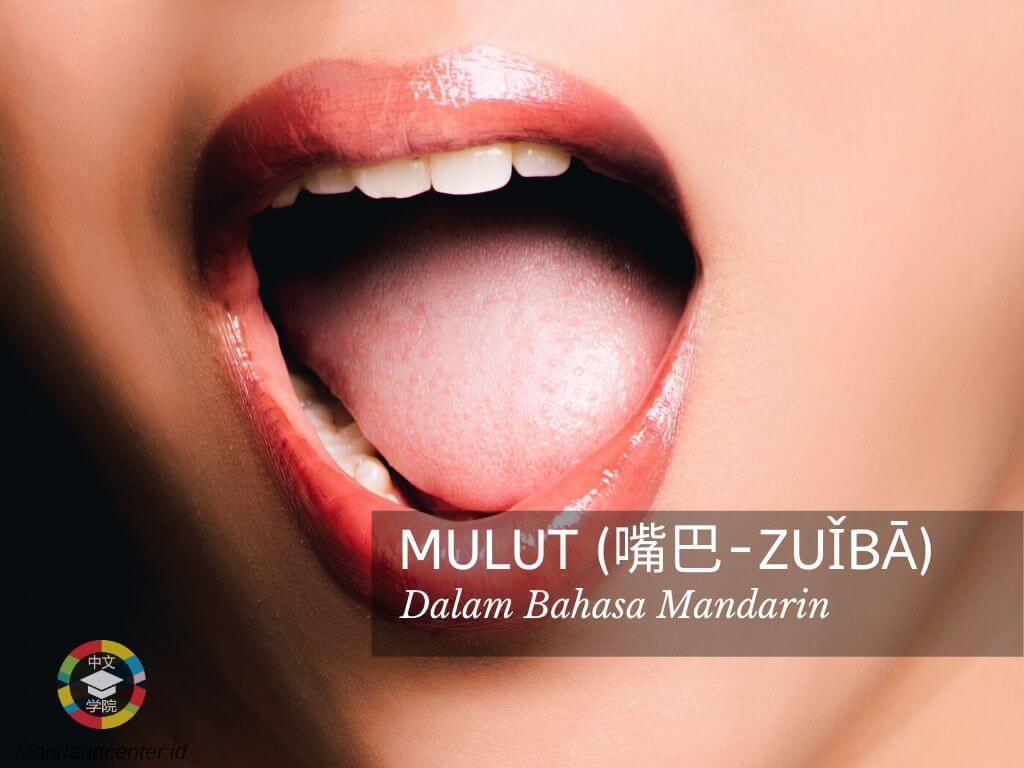 Mulut Dalam Bahasa Mandarin